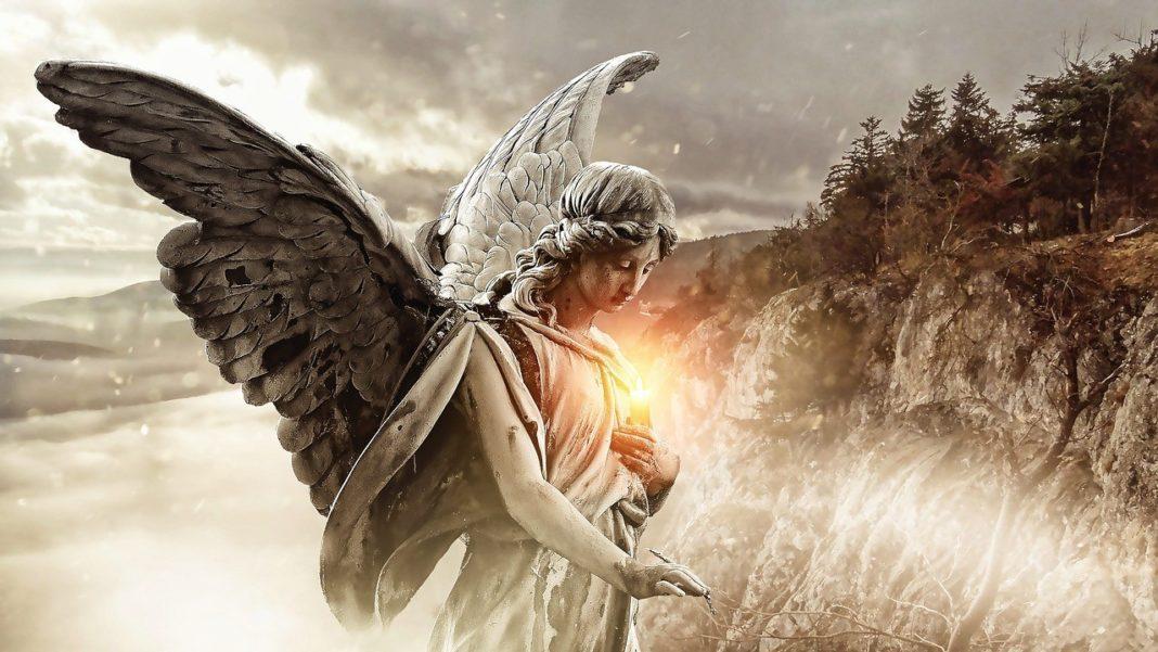 angel number 0000