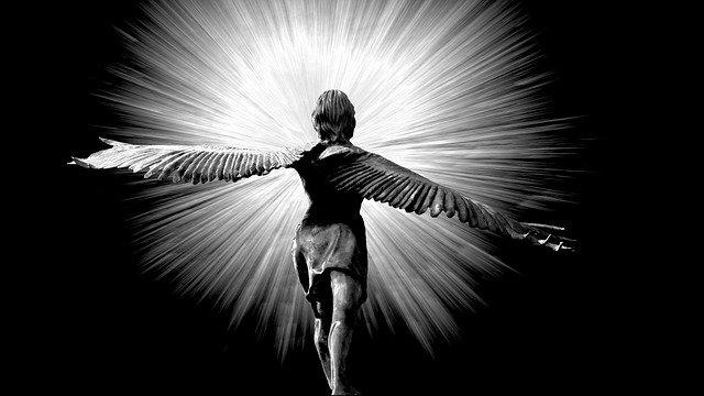 archangel 313